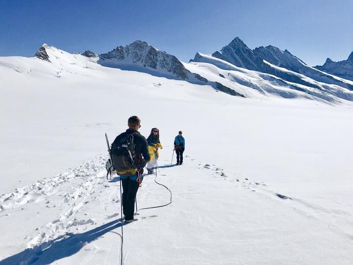 W drodze z przełęczy Jungfrau na Walcherhorn (3693 m n.p.m.)