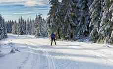 Trasy biegowe w Lesie Bawarskim są przyjazne dla amatorów