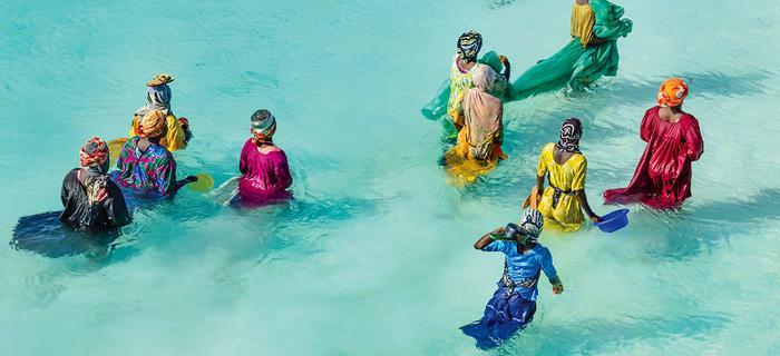 Zanzibar. Kobiety odchodzą daleko od brzegu i zbierają owoce morza