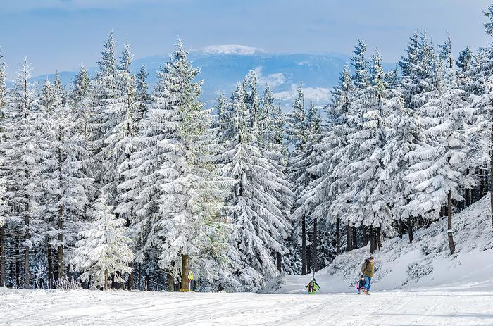 Skrzyczne (1257 m n.p.m.) to najwyższy szczyt Beskidu Śląskiego