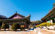 Klasztor Wolchong-sa w Pjongczangu