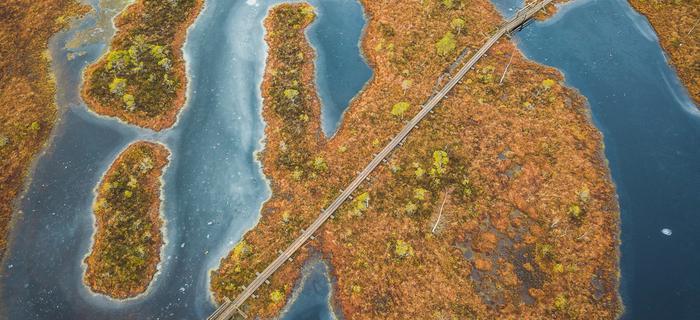 Park Narodowy Kemeri na Łotwie