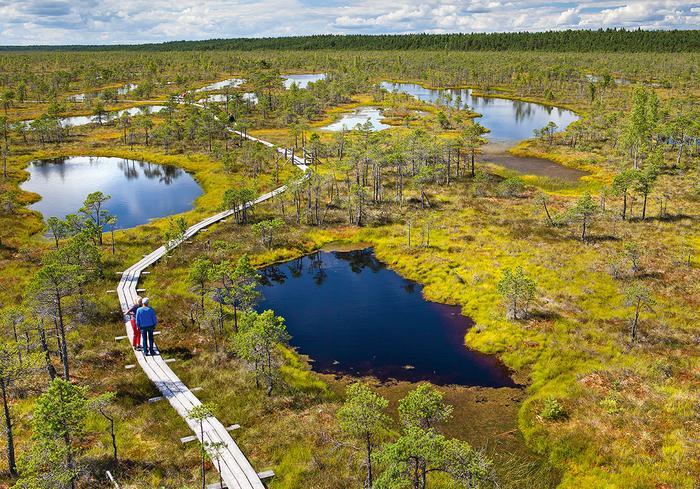 Park Narodowy Kemeri