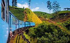 Pociągiem wśród plantacji herbaty na Sri Lance