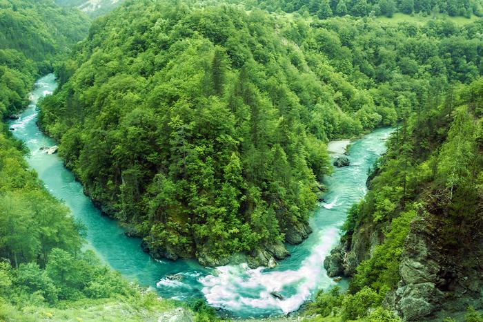 Widok na rzekę Tara