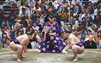 Zawodnicy sumo gotowi do walki