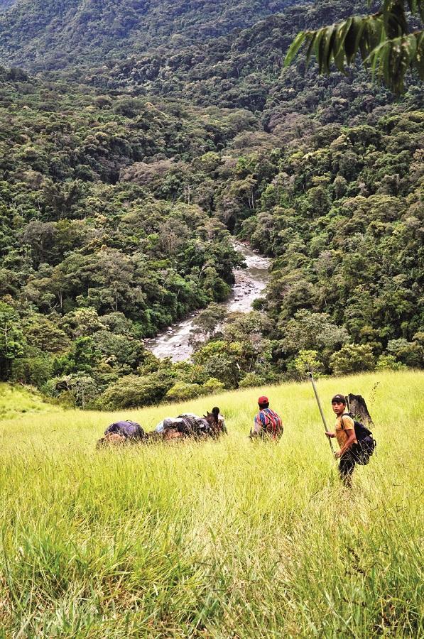 Widok na dolinę rzeki Altamachi