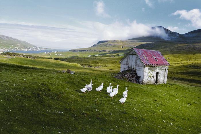 Wysunięta najdalej napołudnie Suðuroy słynie zeszczególnie pięknych krajobrazów