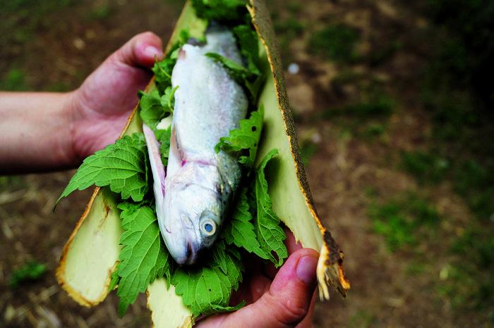 Ryba pieczona w korze