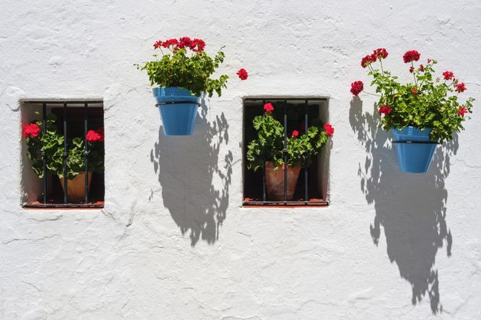 Kolorowe donice z kwiatami zawieszone na białych ścianach domów to jeden ze znaków rozpoznawczych Mijas