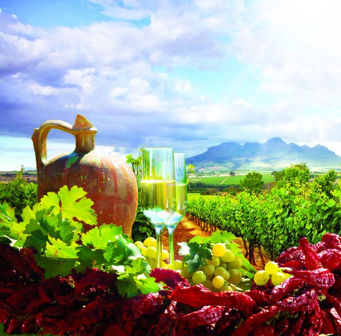 W macedońskim regionie winiarskim Tikves wino produkowane jest od IV wieku p.n.e.