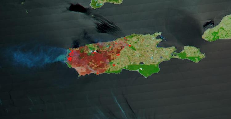 Wyspa Kangura w ogniu