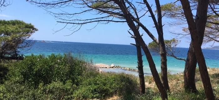 Sardynia, plaża w Alghero