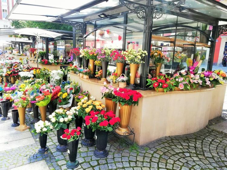 Świdnica. Kwiaciarki na stałe wpisały się w krajobraz rynku