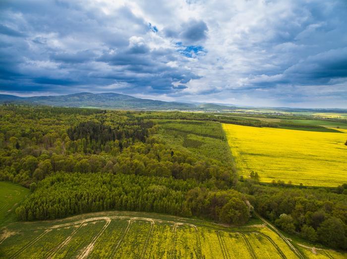 Góry Opatowskie
