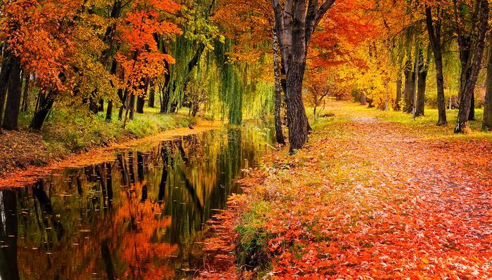 Jesień w Polsce, zdjęcie ilustracyjne
