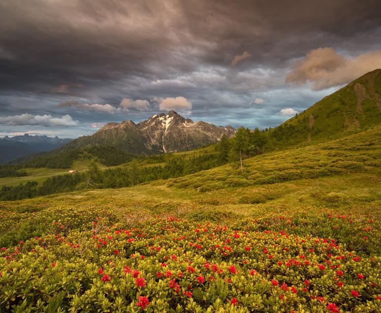 Pasmo Lagorai jest najbardziej dziewiczym obszarem w Trentino