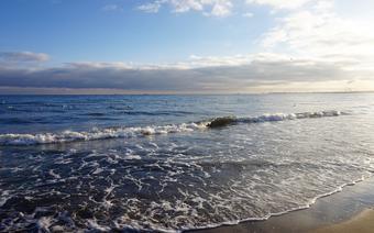 Sinice w Bałtyku 2021: które kąpieliska są zamknięte?/zdjęcie poglądowe